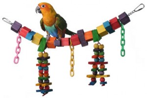 hanging parrot toy