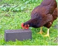 chicken mineral Peckabloc
