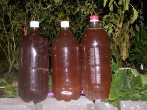 homdemade fertiliser