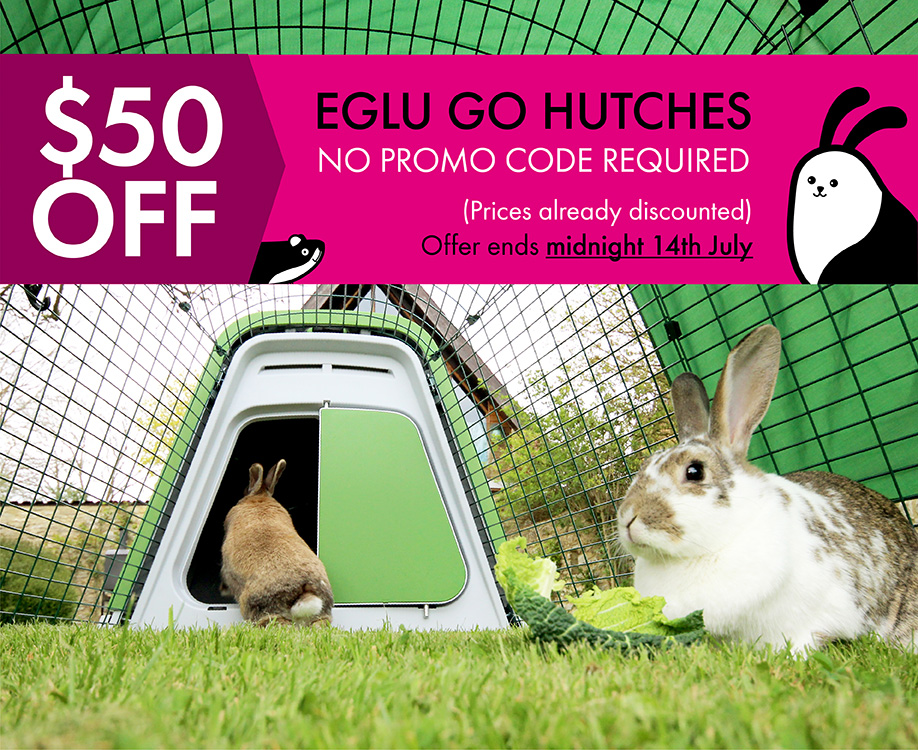 Eglu-Hutch---50-Dollars-Off---Banner-varients_Blog_7fcd037b